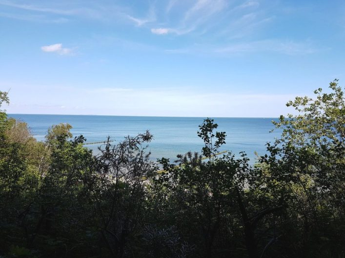 Ausblick auf die Ostsee von der Steilküste aus