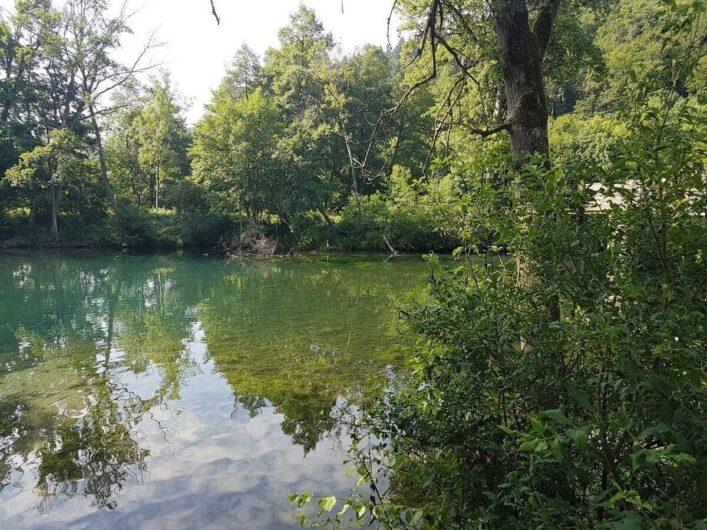 Bäume spiegeln sich in der Altmühl hinter Riedenburg