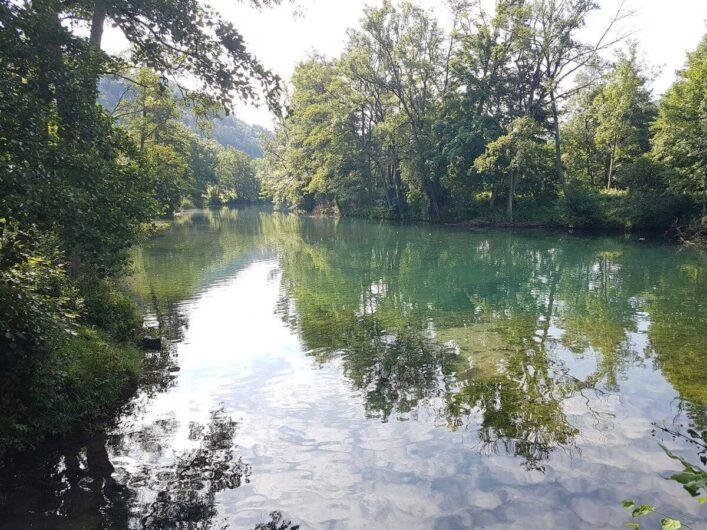 Bäume spiegeln sich im Fluss Altmühl