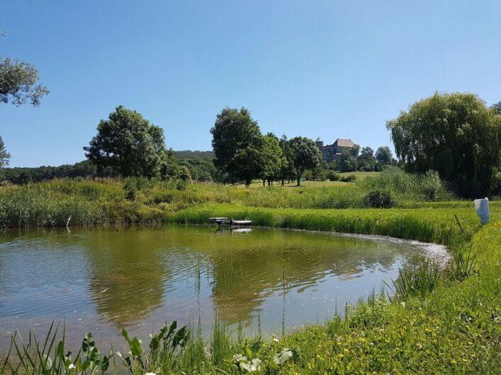 Weiher mit der Burg Colmberg im Hintergrund