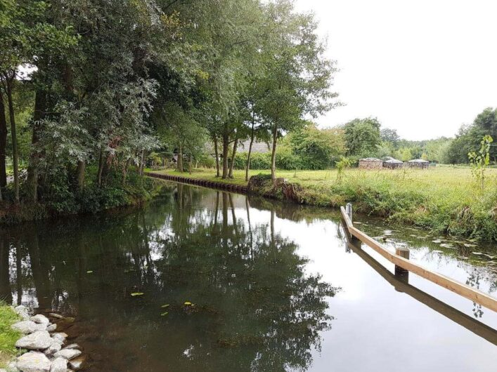 Fließ mit Spreewald mit sich spiegelnden Bäumen