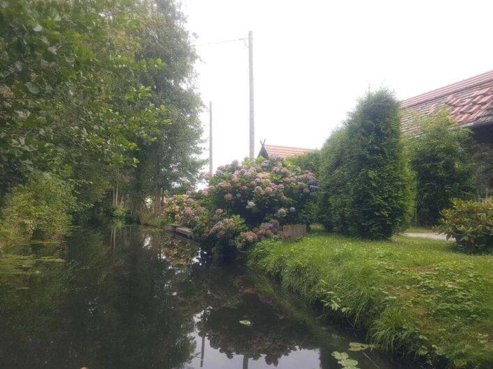 Gehöft mit Blumen an einem Fließ im Spreewald