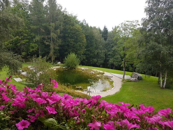 Naturschwimmteich am Kranzbichlhof