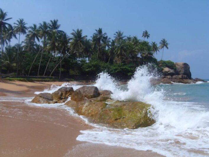 Blick auf die Küste in Sri Lanka mit Palmen im Hintergrund