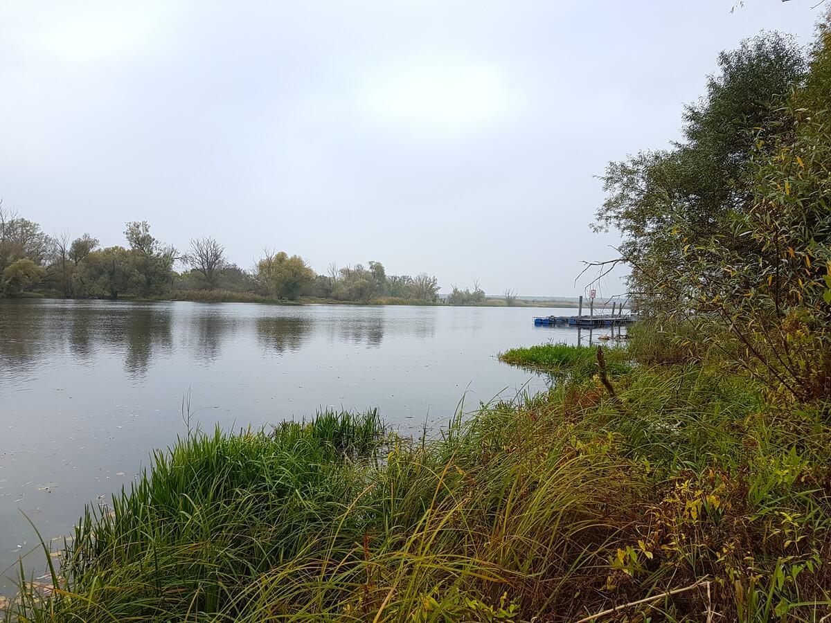 Blick über die Wasserlandschaft der Havel