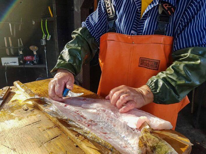 fangfrischer Fisch wird gereinigt