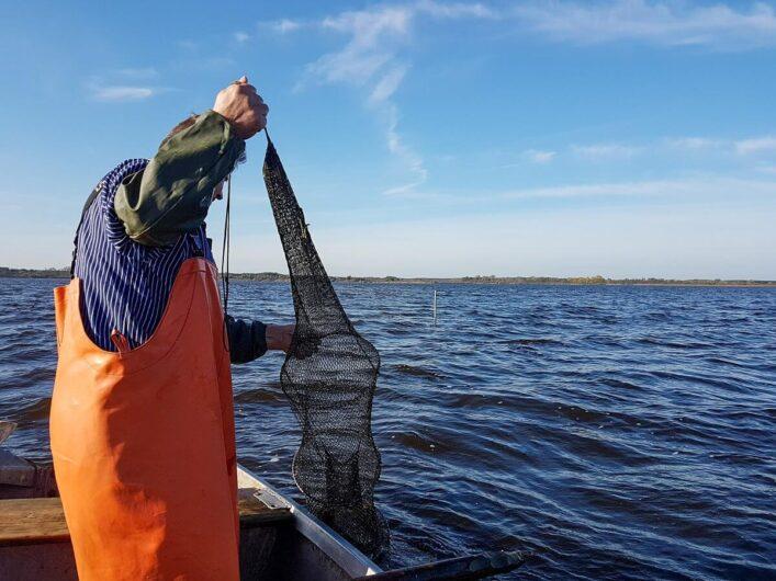Fischer beim Kontrollieren der Reuse