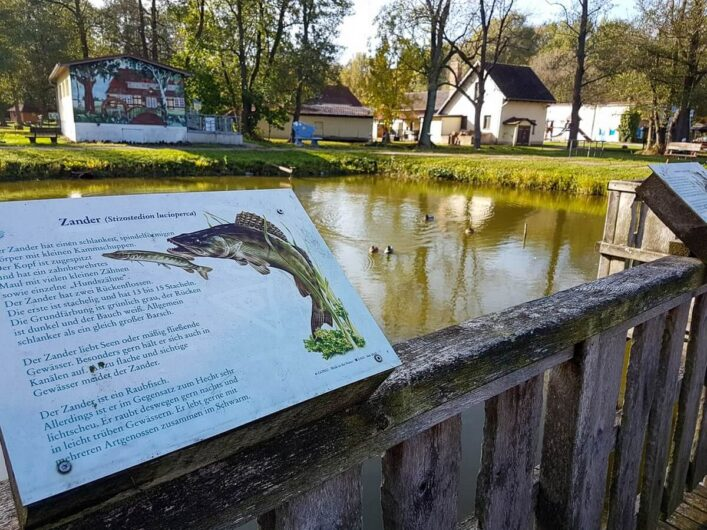 Infotafeln an den Schauteichen der Fischerei Köllnitz