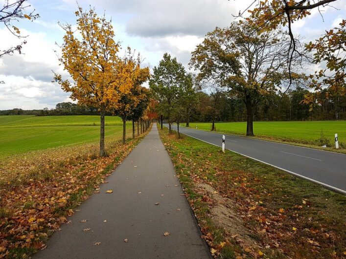 Radweg im Seenland Oder-Spree