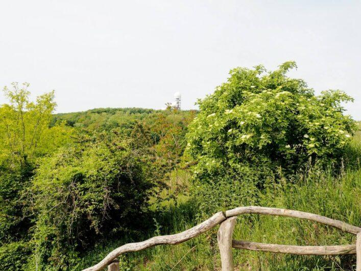 Blick vom Drachenberg zur Abhörstation auf dem Teufelsberg