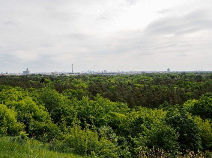 Blick vom Drachenberg über Berlin