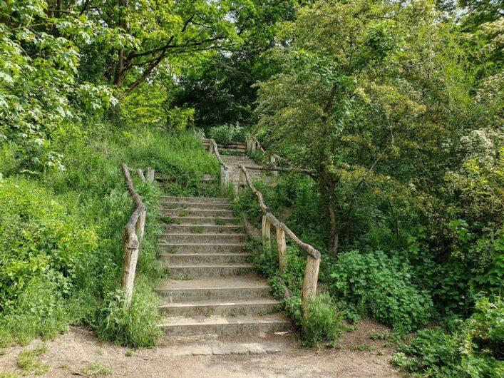 Treppe hinauf zum Drachenberg