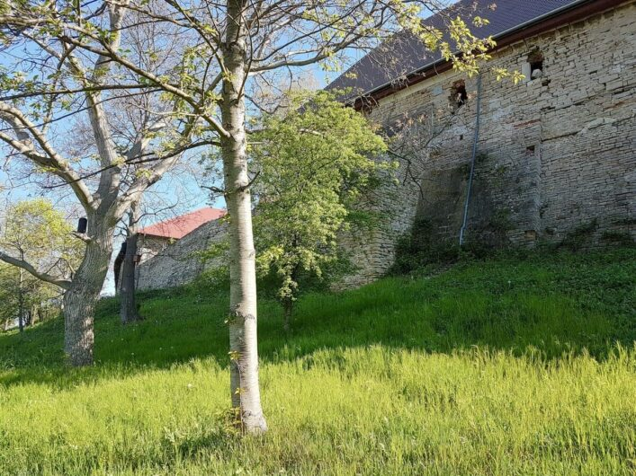 Blick auf die Mauern von Kloster Posa
