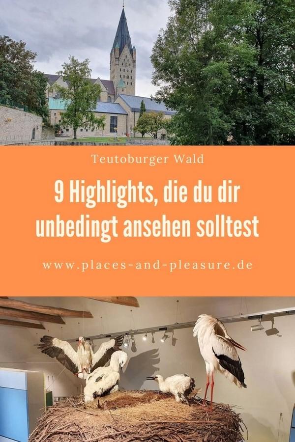 Werbung | Interessante Städte, herrliche Natur und bekannte Heilbäder: Dafür steht der Teutoburger Wald. Hol dir Inspiration für deine Reise. #Paderborn #Draussenunterwegs #Reisetipp #NRW #TeutoburgerWald