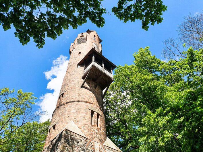 Blick hoch zum Bismarckturm mitten im Wald