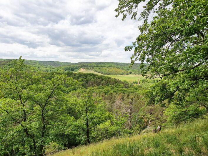 Blick auf die hügelige Landschaft am Thüringer Blick
