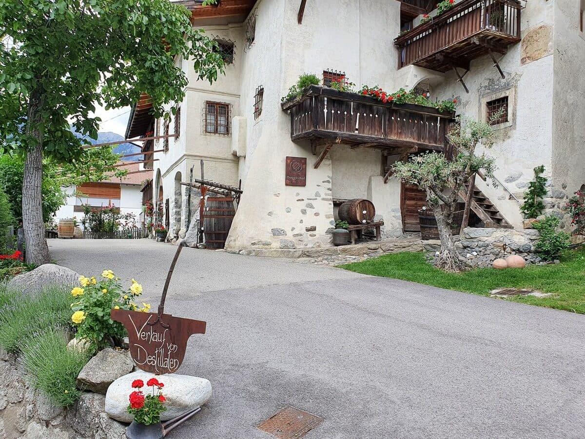 Blick auf den Torgglerhof Schenna