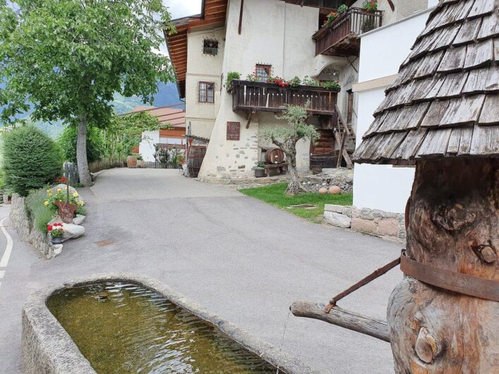 Blick auf die Auffahrt des Torgglerhofs