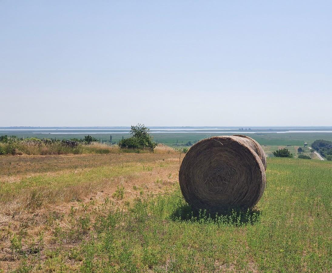 Felder und Strohballen vor dem Neusiedlersee in der Ferne