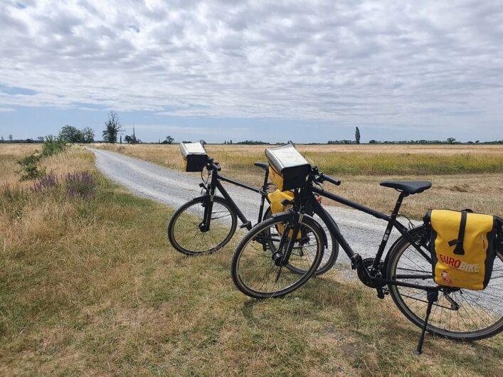 Leihräder in der Steppenlandschaft des Neusiedlersees