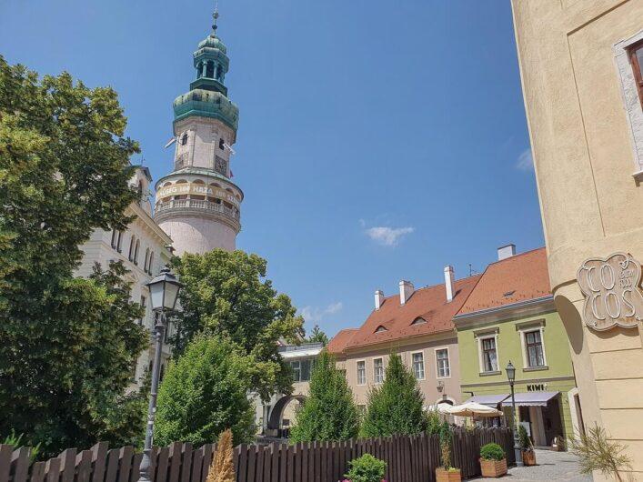 Feuerwachturm von Sopron hinter Bäumen