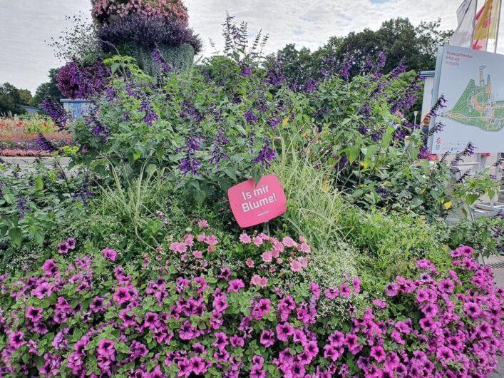 Blühende Blumenrabatten hinter dem Eingang am egapark