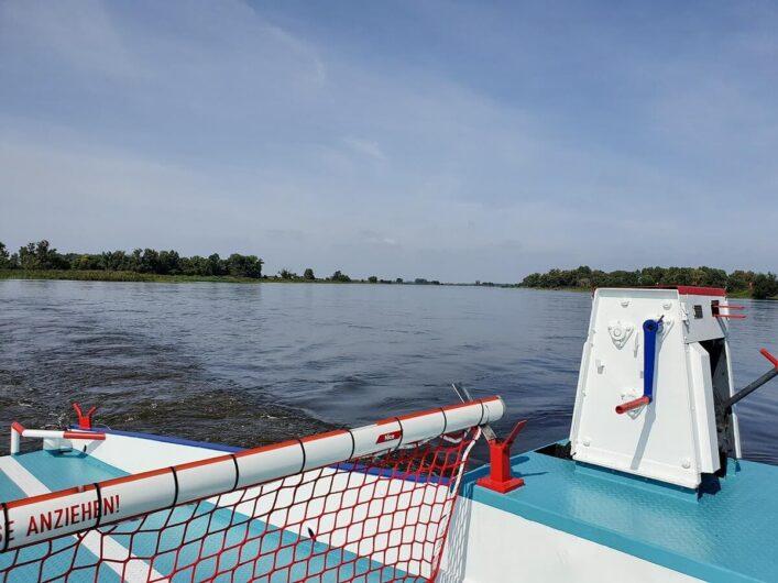 Blick von der Fähre auf die Elbe