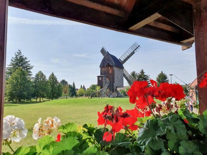 Bockwindmühle in Grieben durch Blumenfenster betrachtet