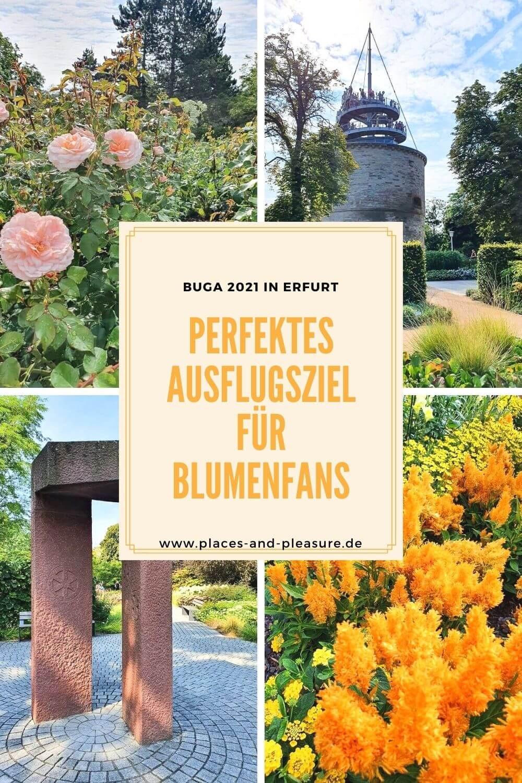 Werbung   Buga 2021 in Erfurt: Das perfekte Ausflugsziel für Blumenfans. Auf der Bundesgartenschau erwarten dich Gartenträume an zwei Standorten, im egapark und am Petersberg. Im Beitrag findest du Impressionen und wichtige Infos für deinen Besuch.
